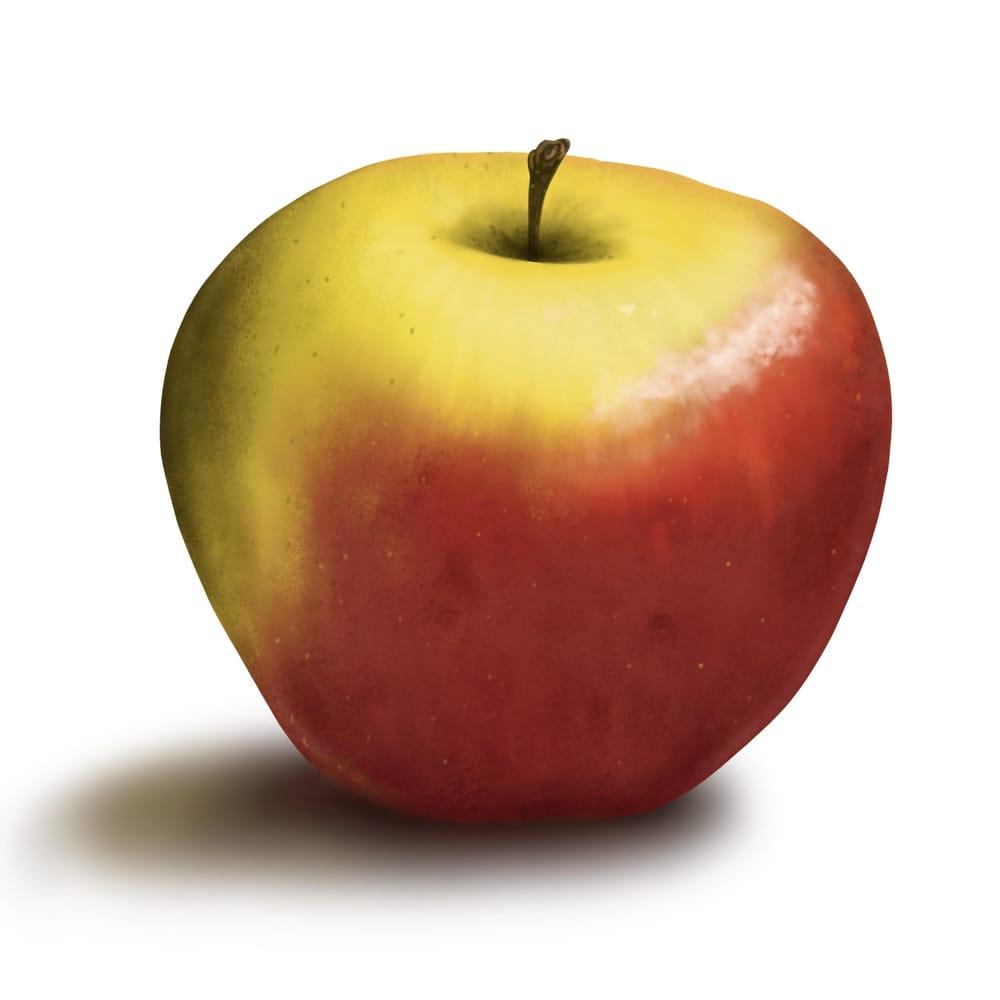 Apple Paint-along - image 1 - student project