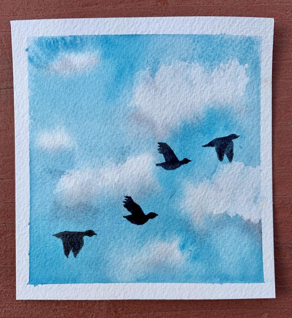 Birds Challenge - image 3 - student project