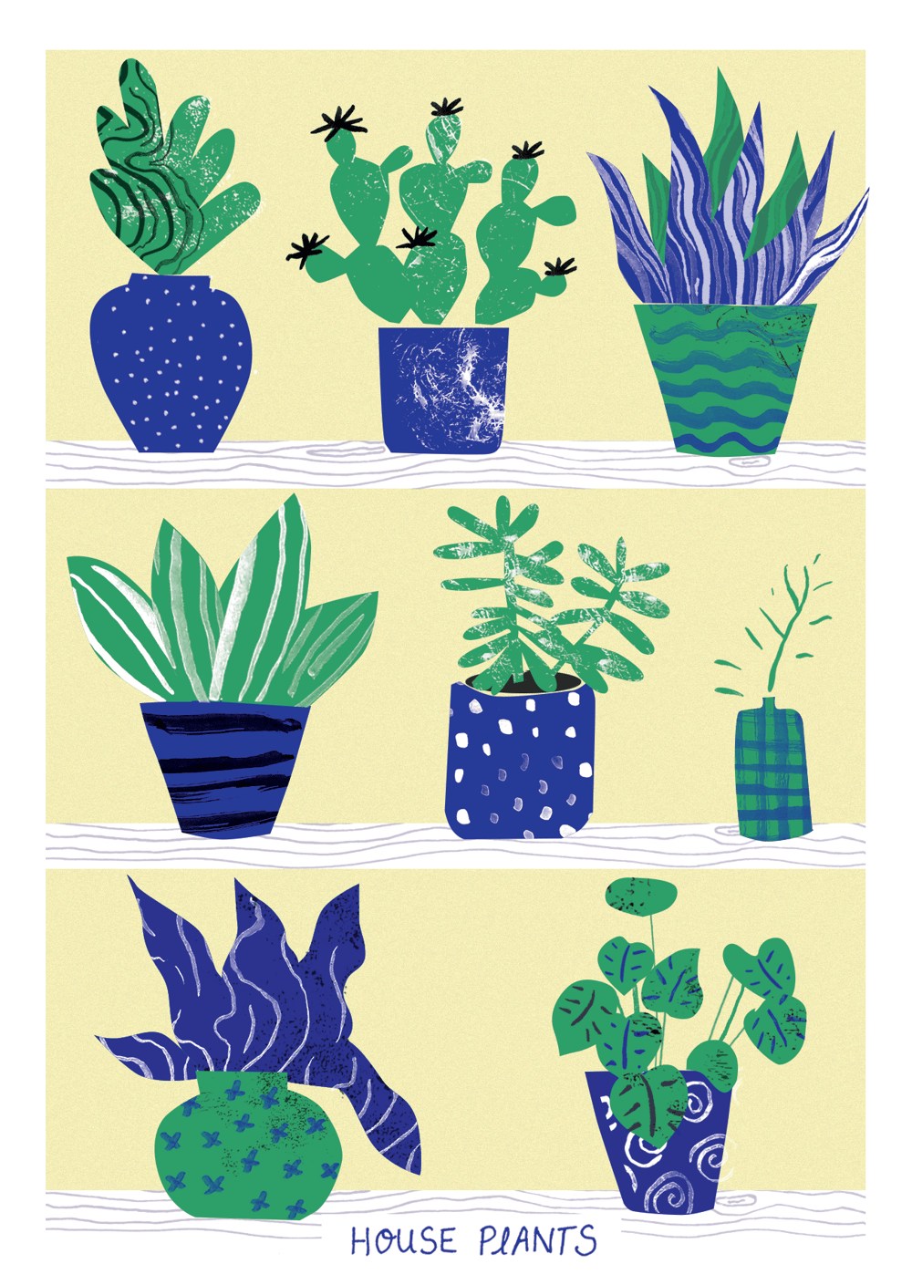 Cactus and indoor plants - image 5 - student project