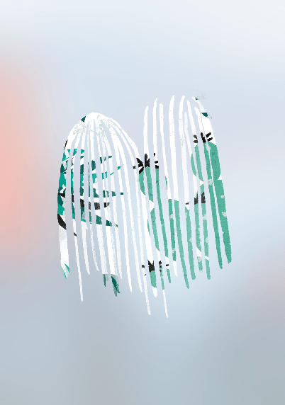 Cactus and indoor plants - image 4 - student project