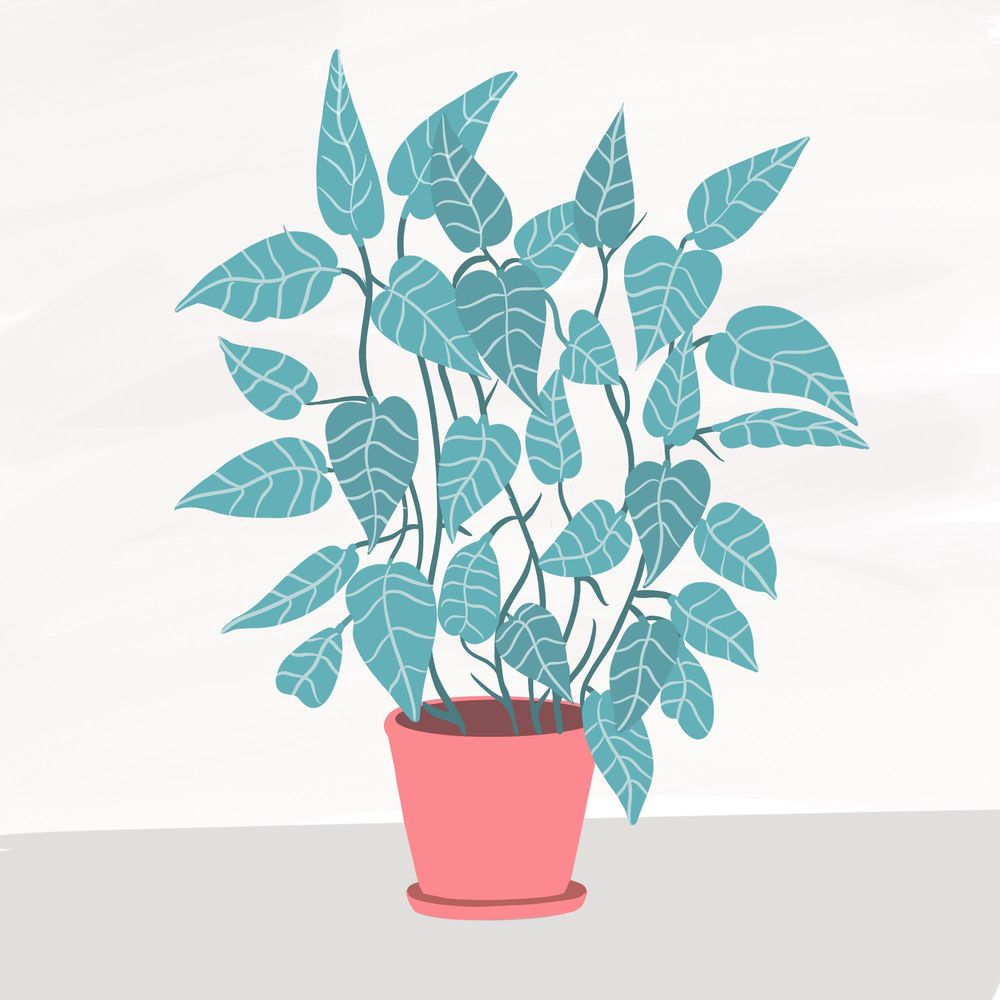 Cats and plants! - image 8 - student project