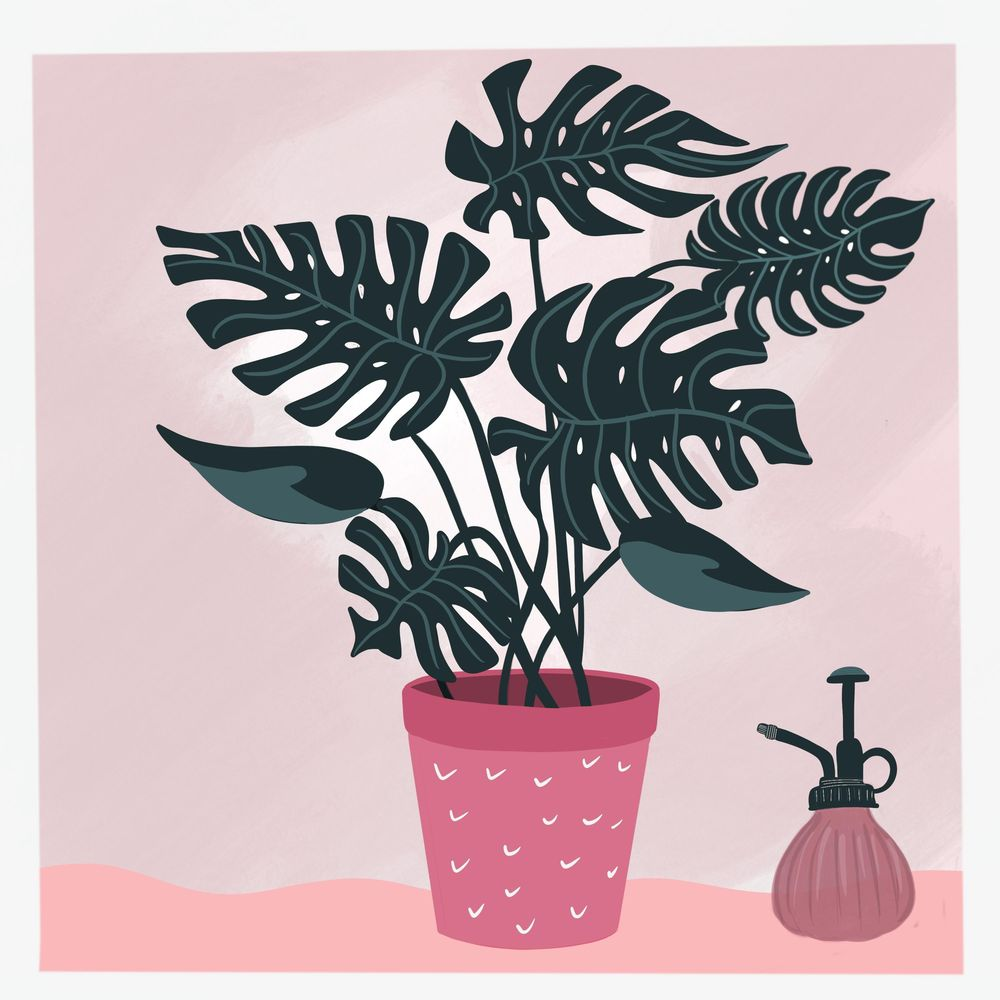 Cats and plants! - image 3 - student project