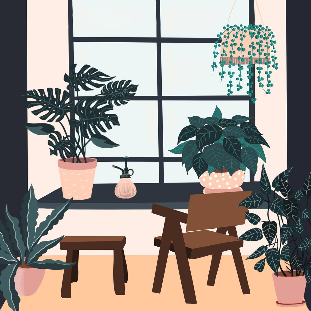 Cats and plants! - image 4 - student project