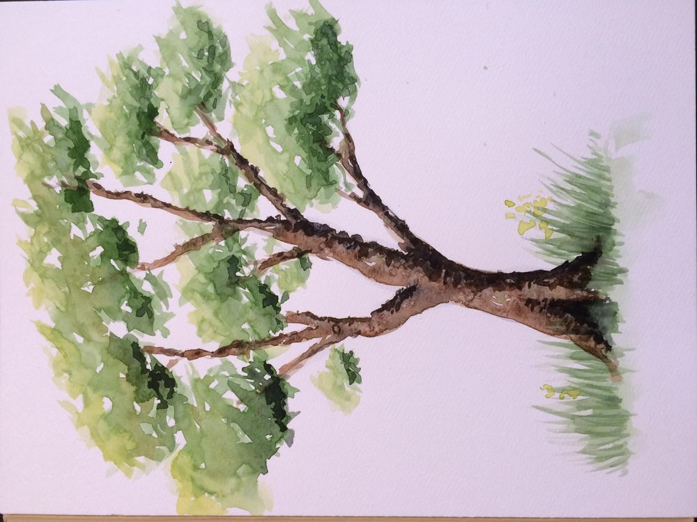 Quick tryout of the ABC trees - image 2 - student project