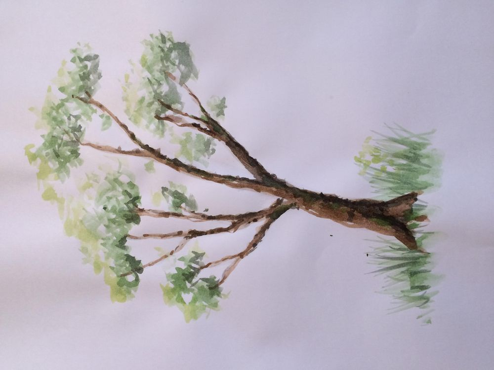 Quick tryout of the ABC trees - image 1 - student project