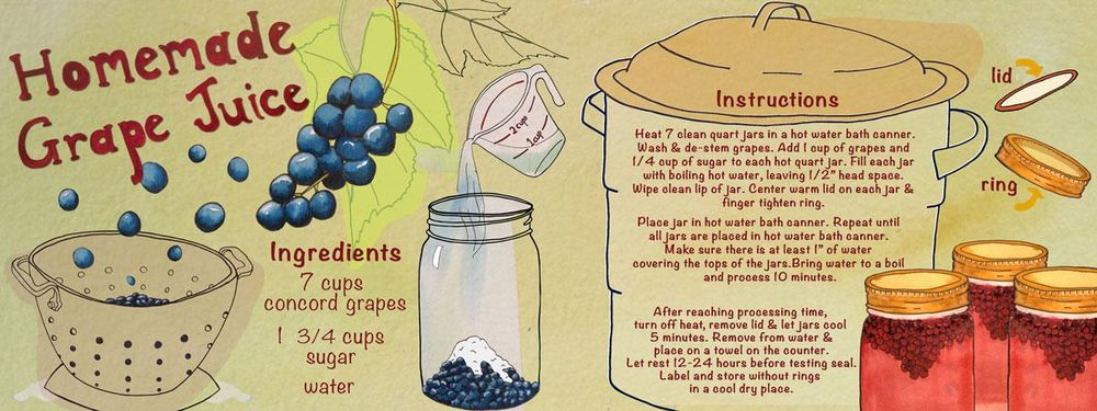 Homemade Grape Juice - image 1 - student project