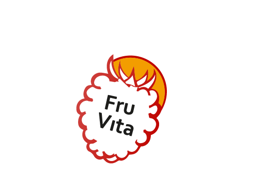 FruVita - image 2 - student project