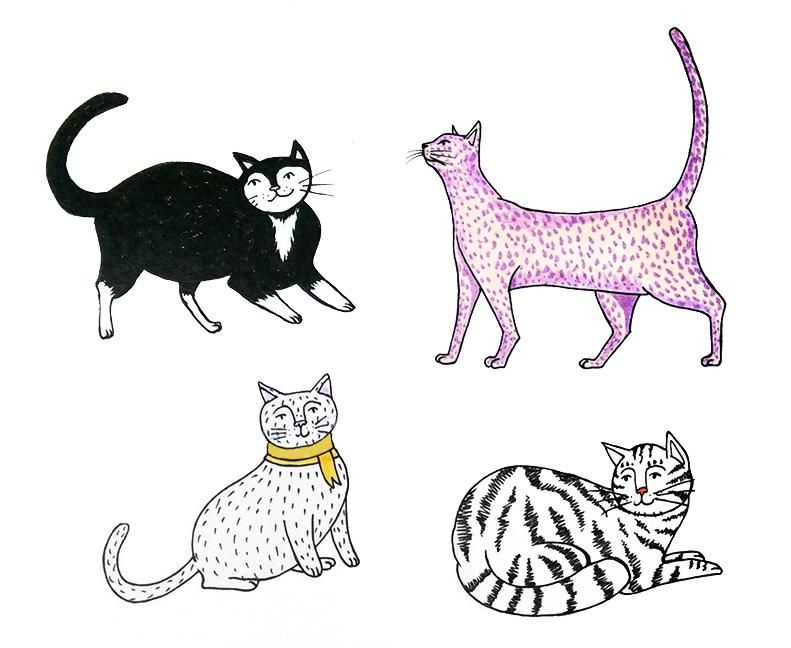 Cute Kittens - image 1 - student project