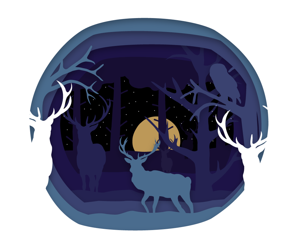 The Forest - image 3 - student project