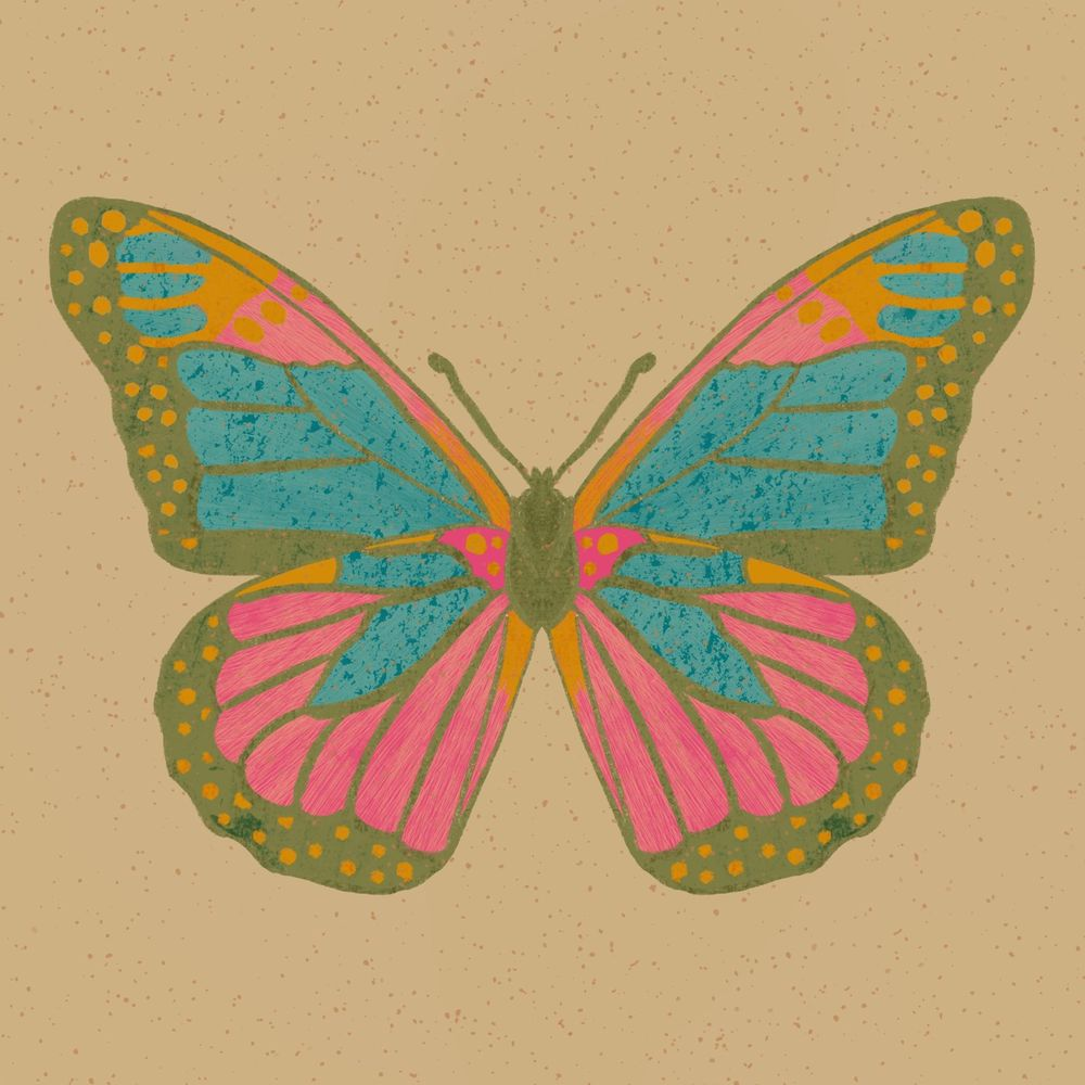 Animated insect illustrations - image 1 - student project