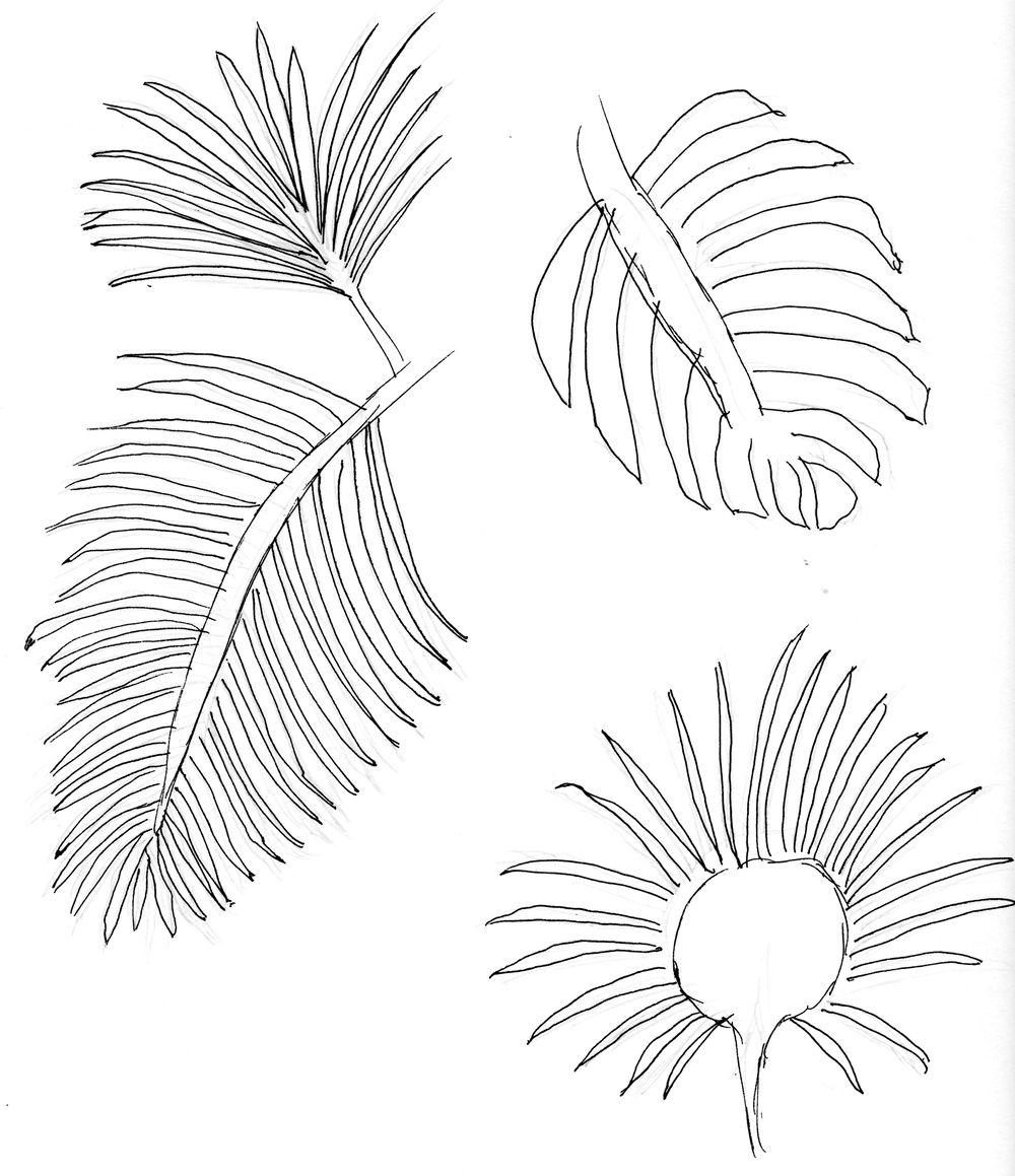 Asian Tropics - image 7 - student project