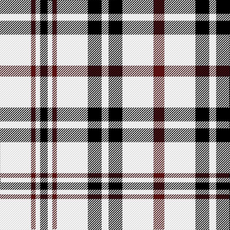 Black, Red & White Plaid - image 1 - student project