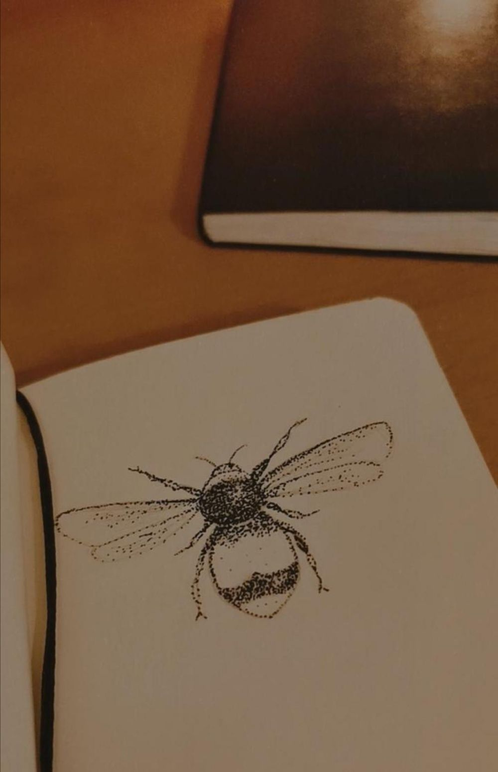 bee stipple - image 1 - student project