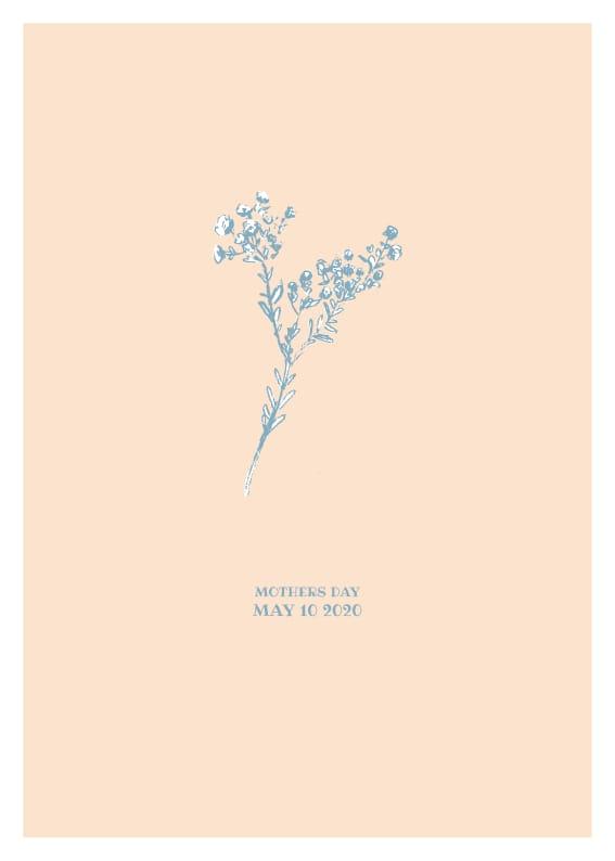 Botanicals - image 1 - student project