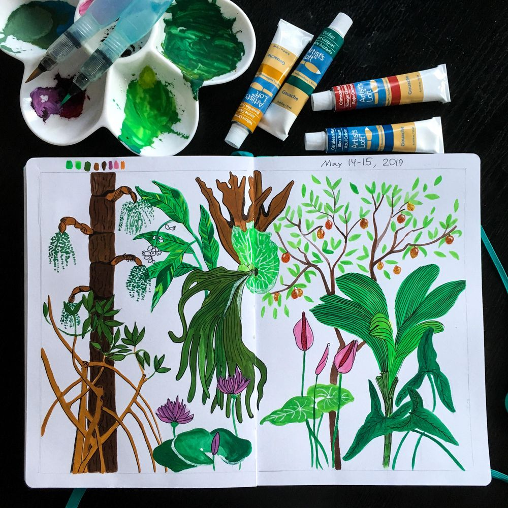 Tropical plants from BBG - image 1 - student project
