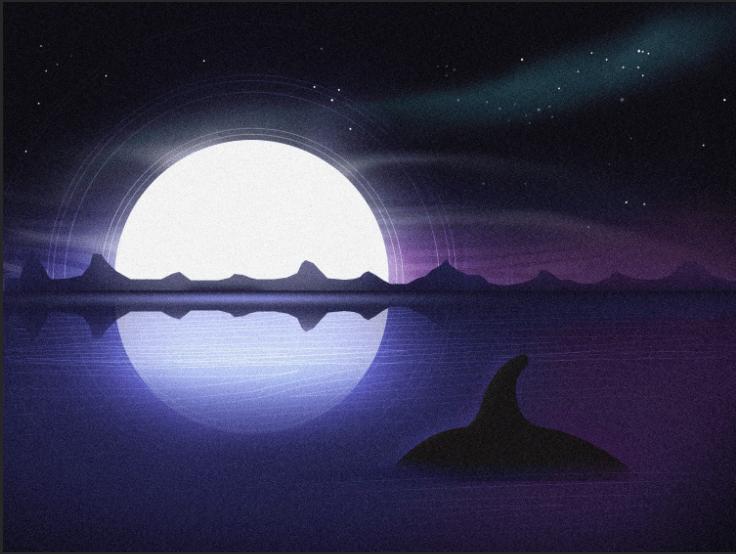 Orca Swim - image 1 - student project