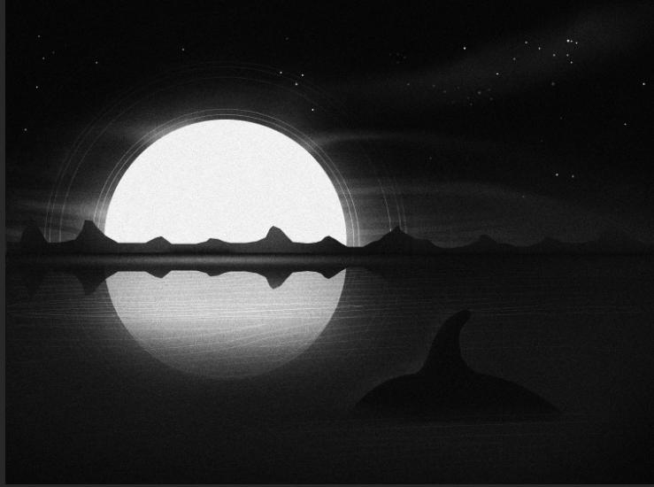Orca Swim - image 2 - student project