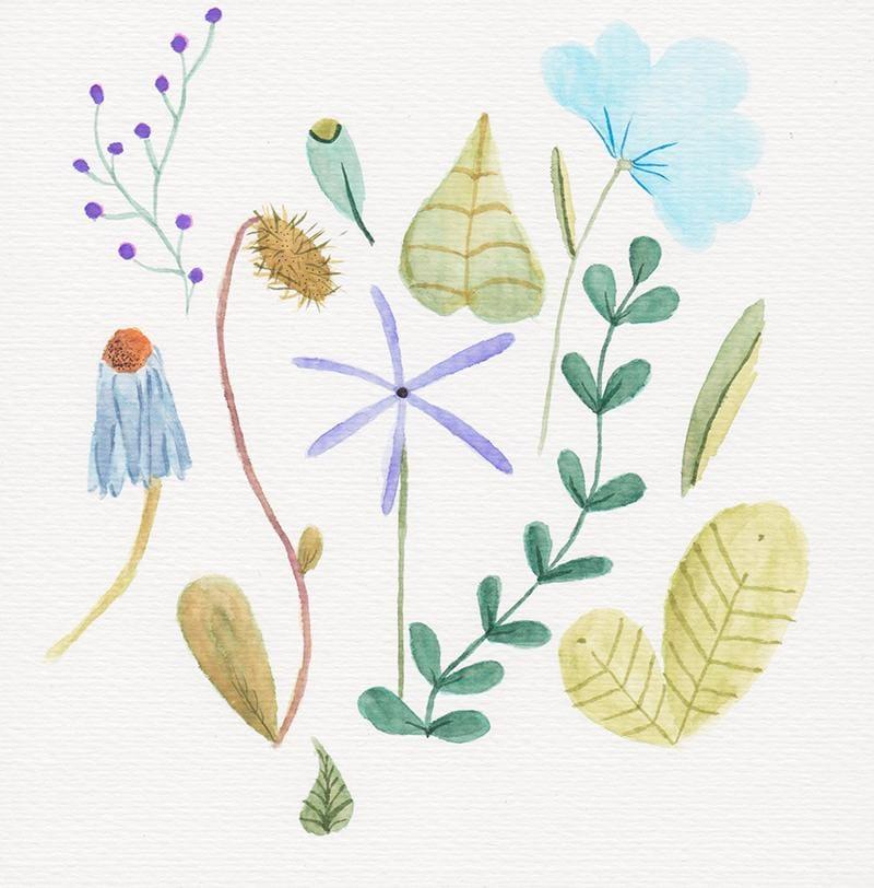 Expressive Brush Pen Florals - image 2 - student project