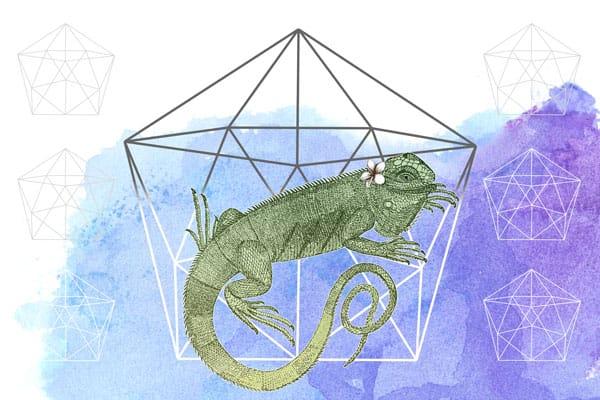 Iguana ID Board - image 3 - student project