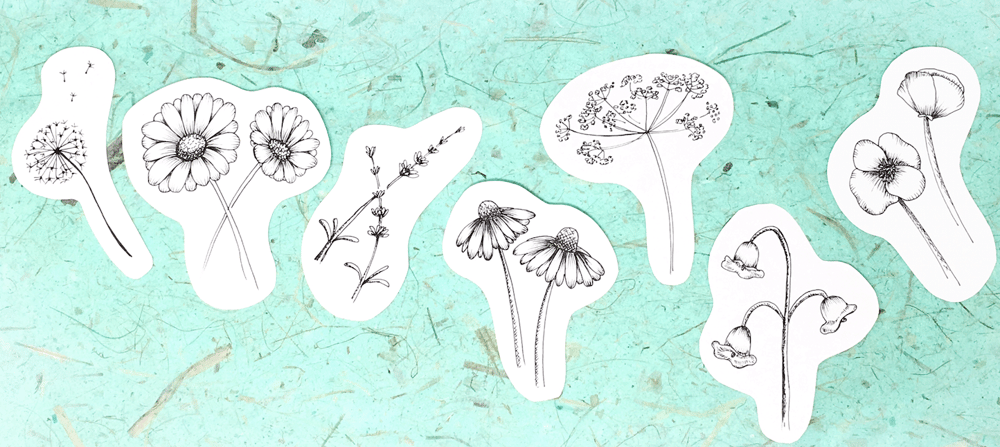 wildflowers in ink - image 1 - student project