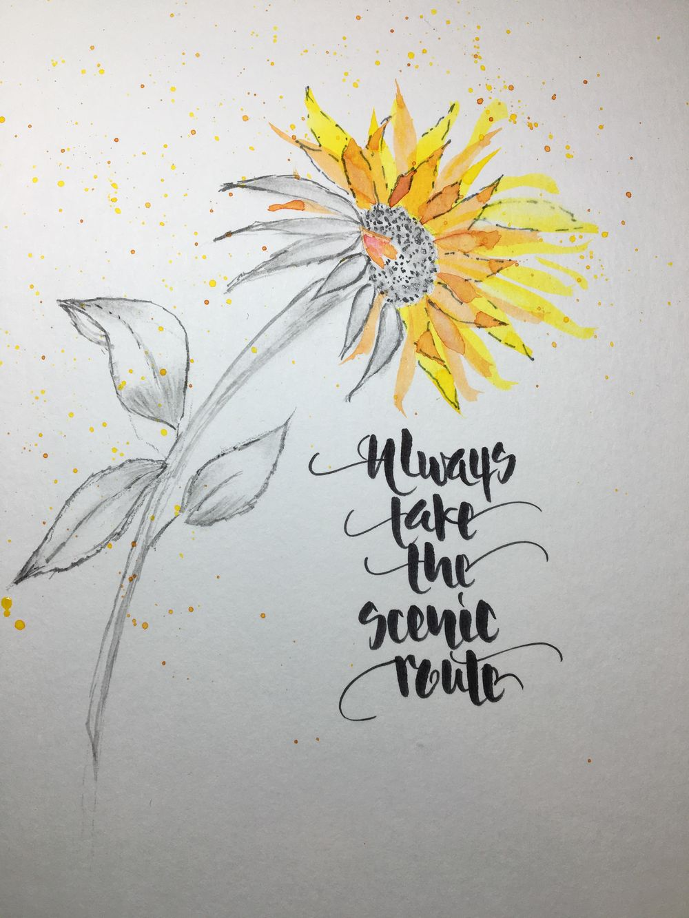Daisies & Thistles - first intentions - image 3 - student project