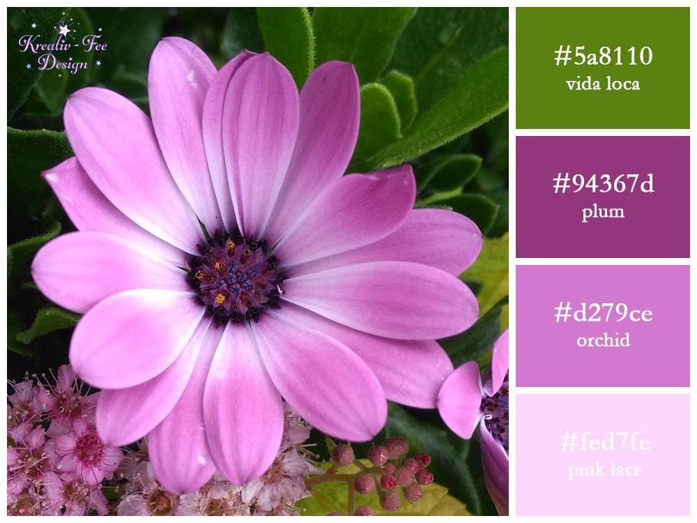Lilac Flower scheme - image 1 - student project