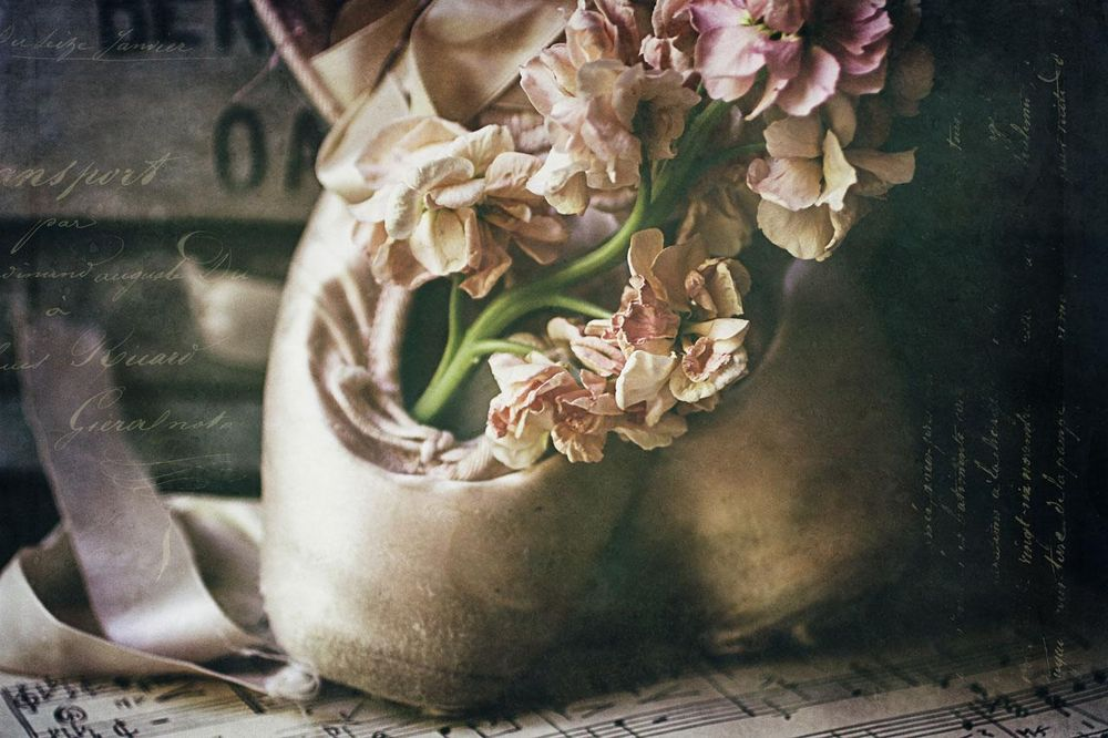 Ballet shoes - image 1 - student project