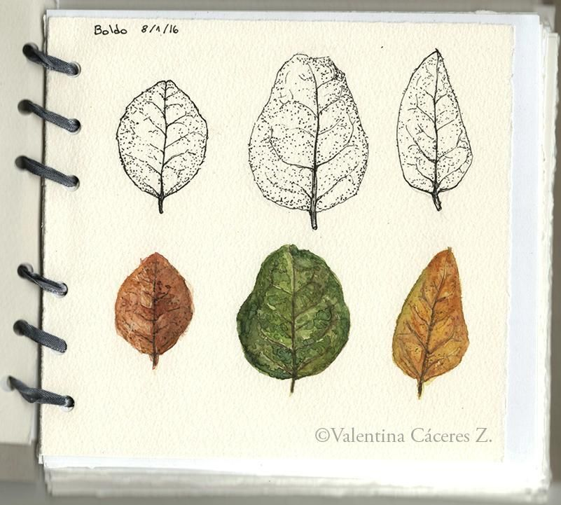 My sketchbook - image 6 - student project