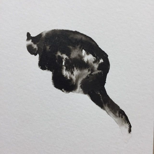 Wet ink animals - image 1 - student project