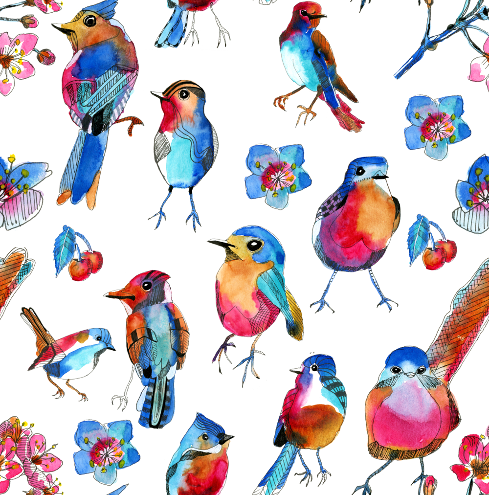 Spring birds - image 4 - student project