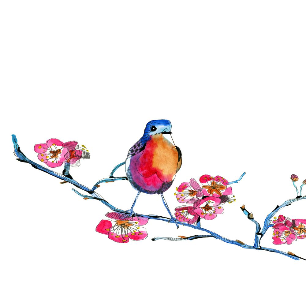 Spring birds - image 2 - student project