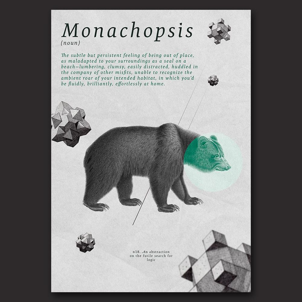 Monachopsis - image 1 - student project
