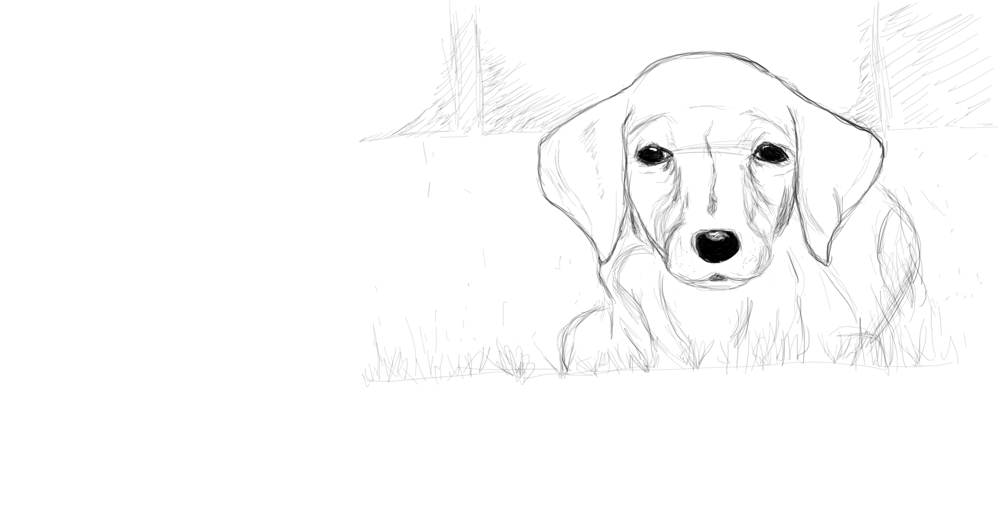 Puppy - image 3 - student project