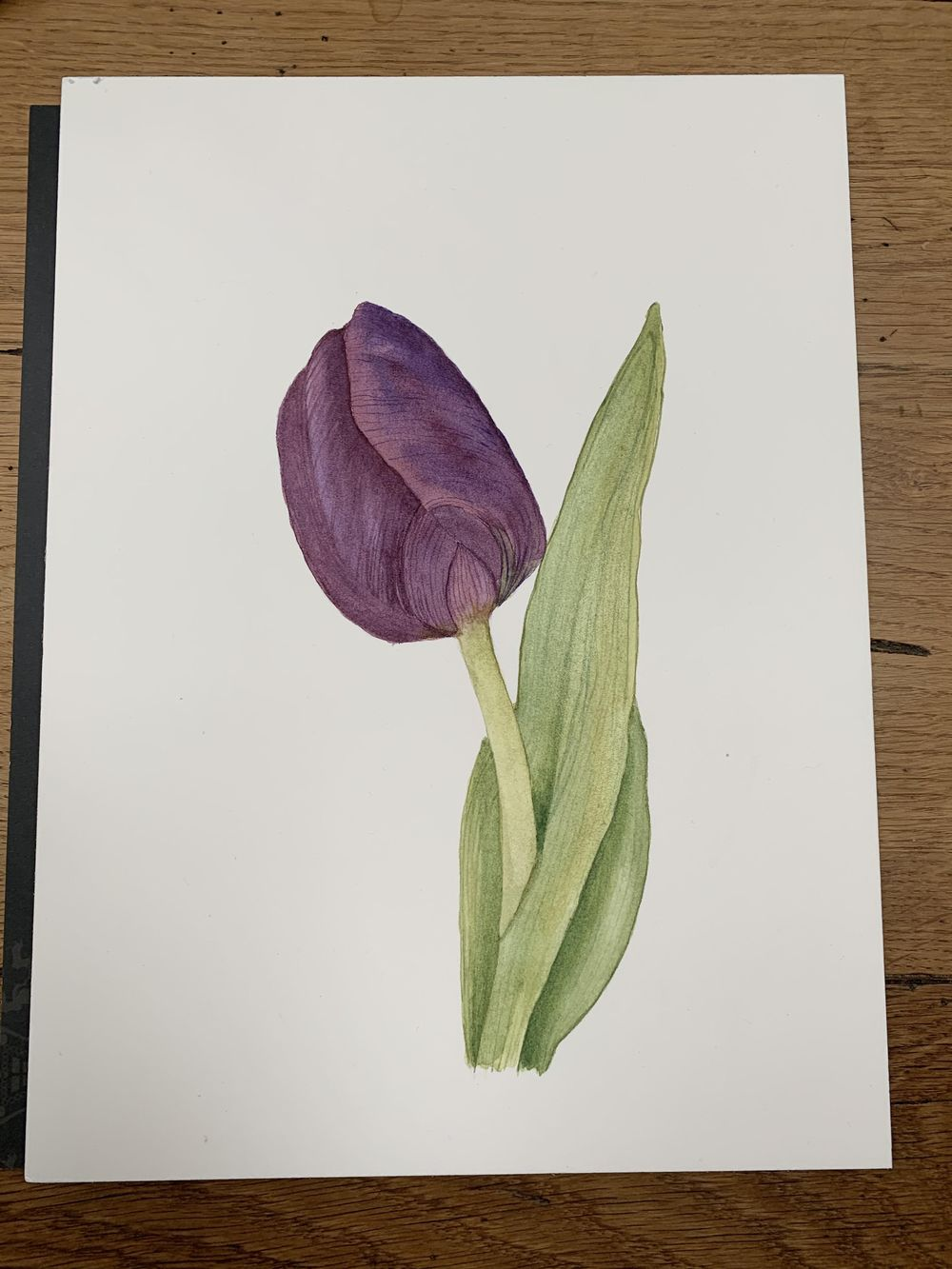 First tulip attempt - image 1 - student project