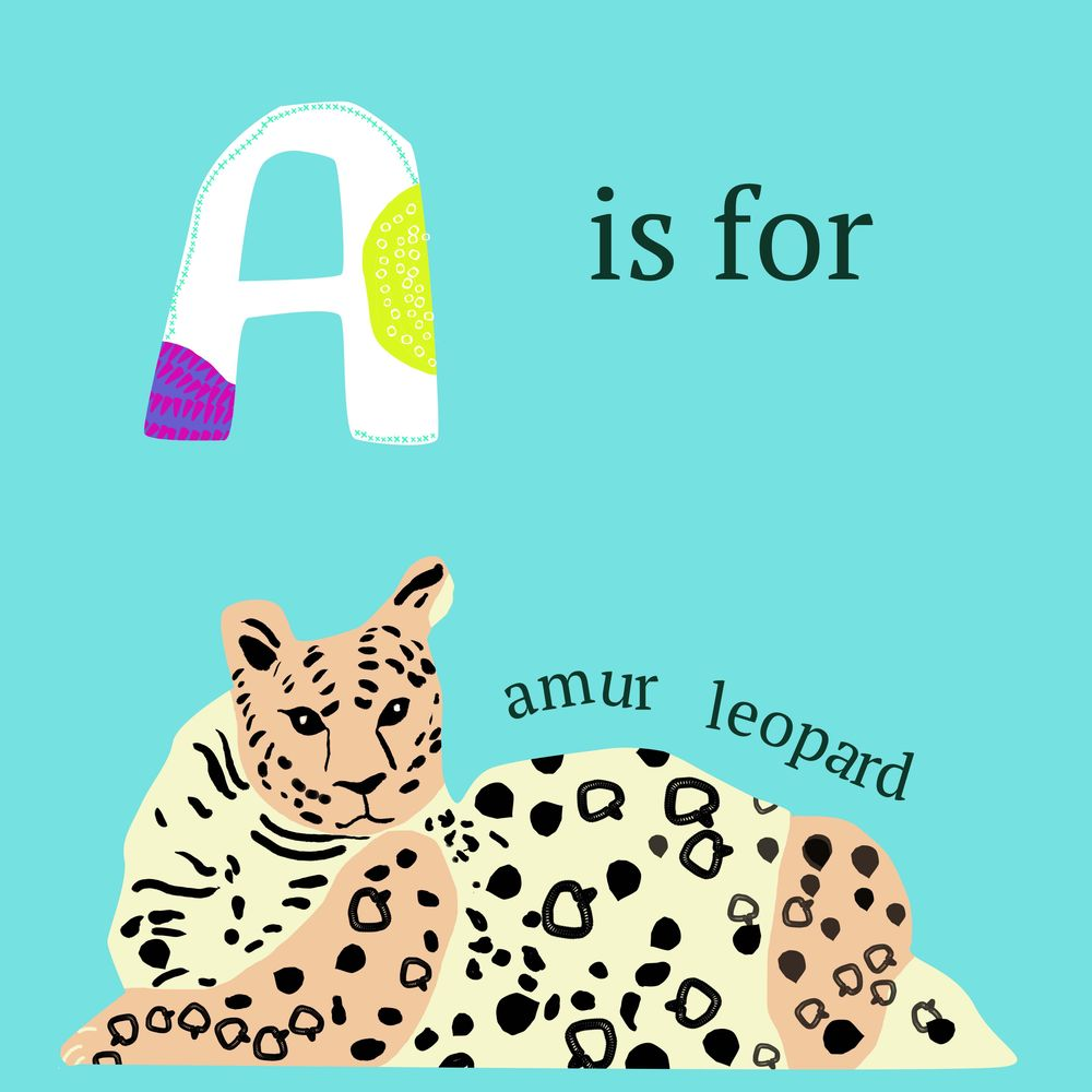 A is for Amur Leopard - image 1 - student project