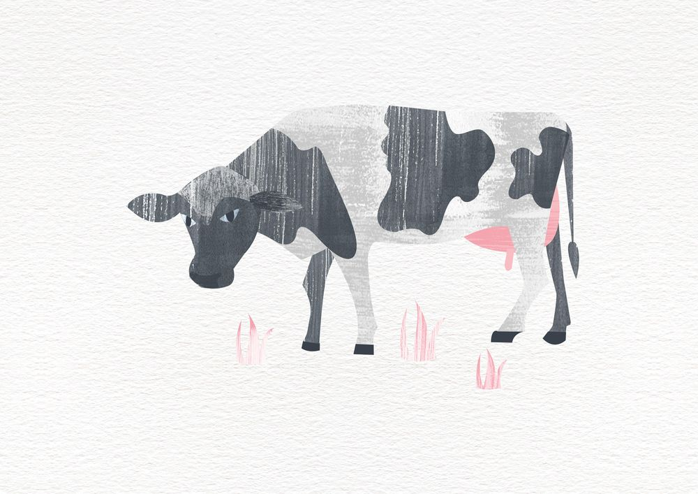 Farm Life - image 2 - student project