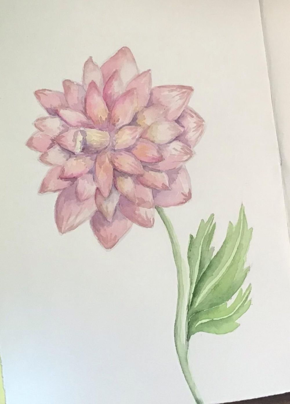 Poppies and Dahlias - image 1 - student project