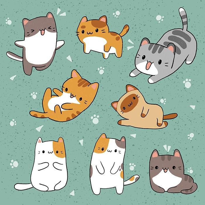 Cats - image 1 - student project