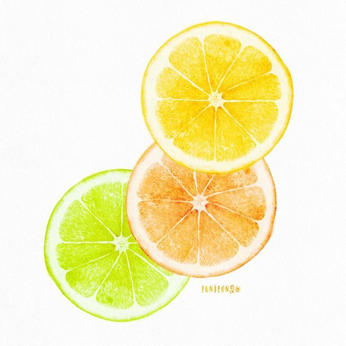 Citrus slices - image 2 - student project