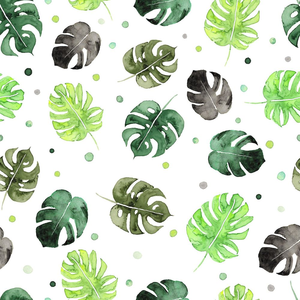 Monstera Bubble - image 1 - student project