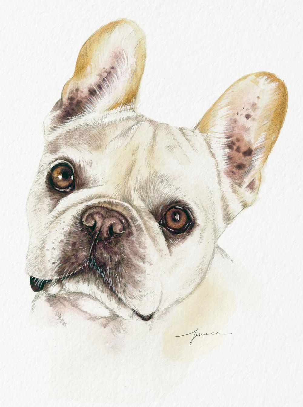Dog Pawtraits - image 1 - student project