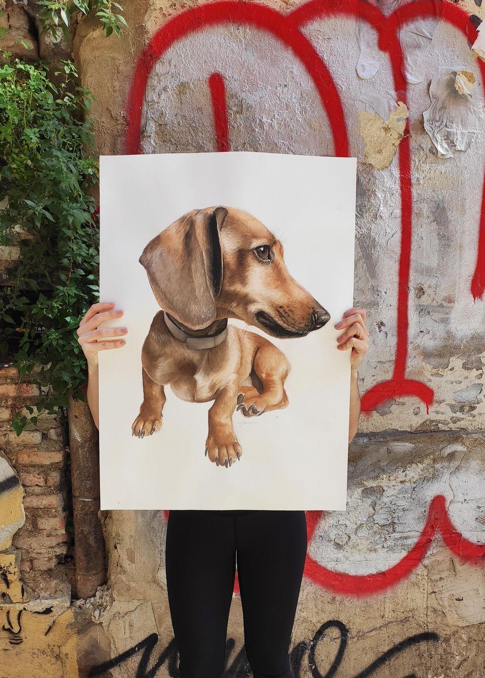 Dog Pawtraits - image 3 - student project