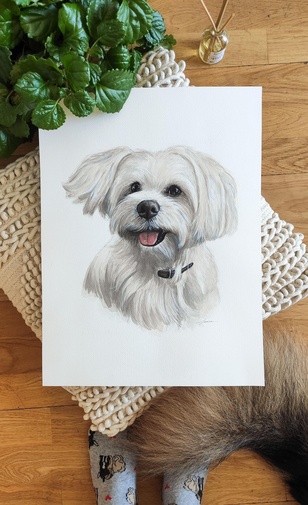 Dog Pawtraits - image 2 - student project