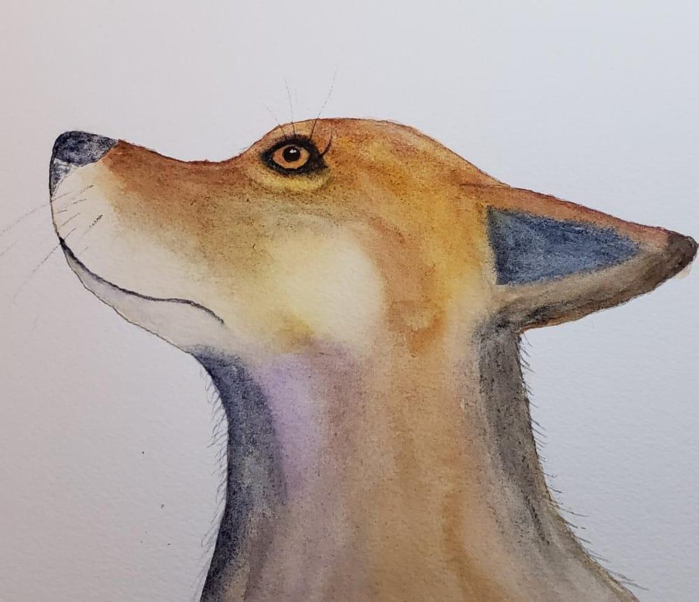 Gloria the fox - image 1 - student project