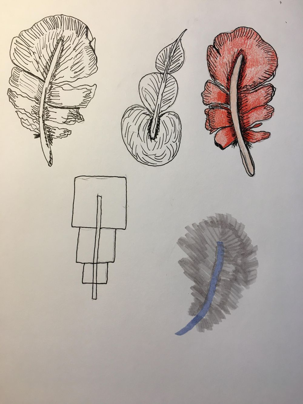 Drawing without fear - image 6 - student project