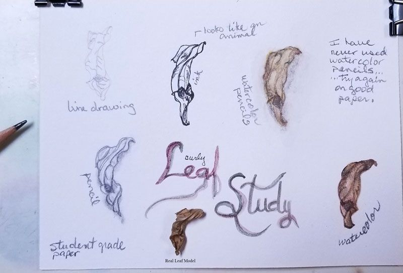 Structuring-creating small sketchbook - image 2 - student project
