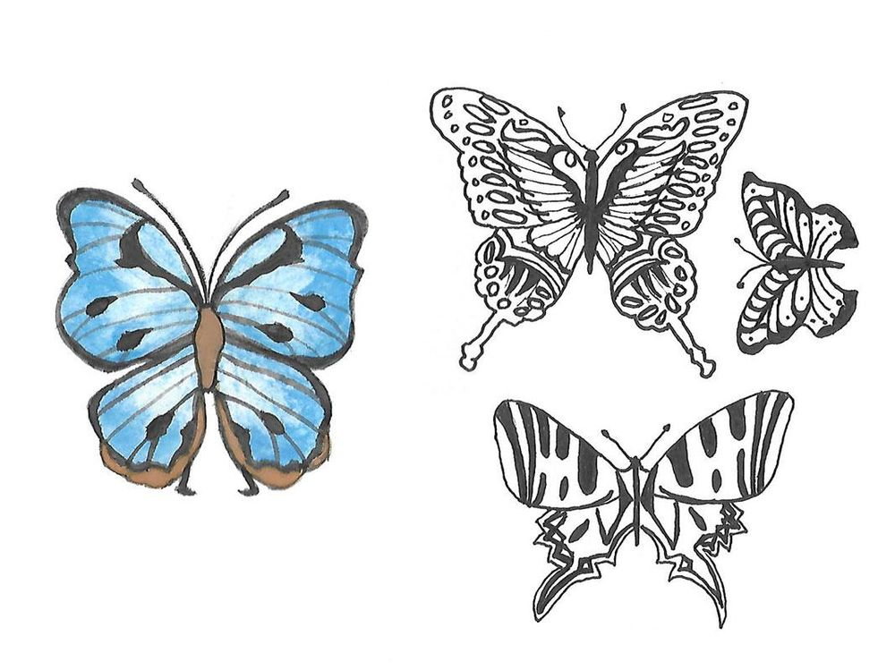 Stylized Butterflies - image 1 - student project