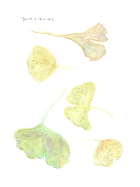 Autumn leaves - image 1 - student project