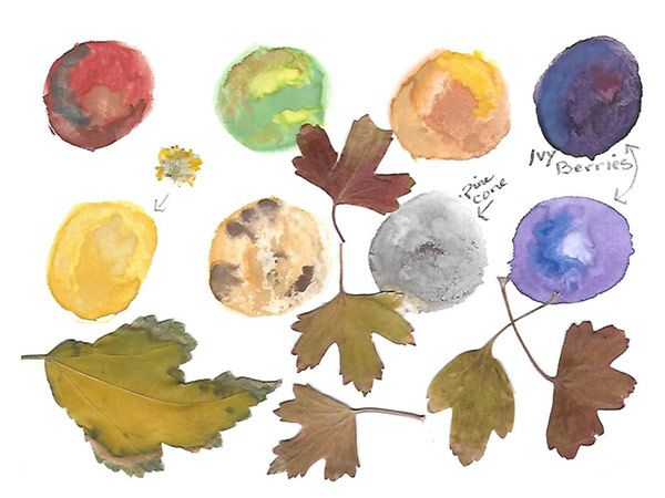 Autumn leaves - image 5 - student project