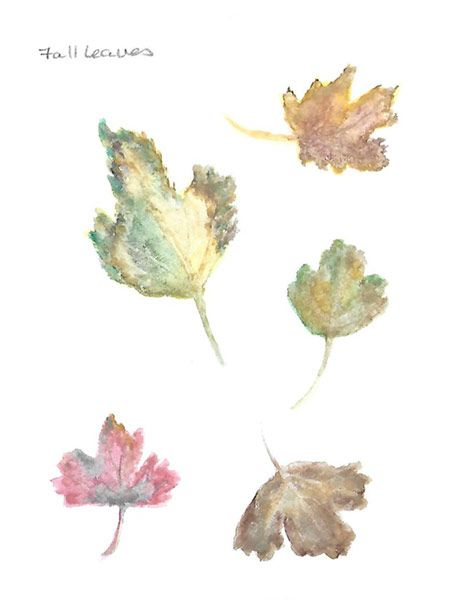 Leaf selections - image 1 - student project